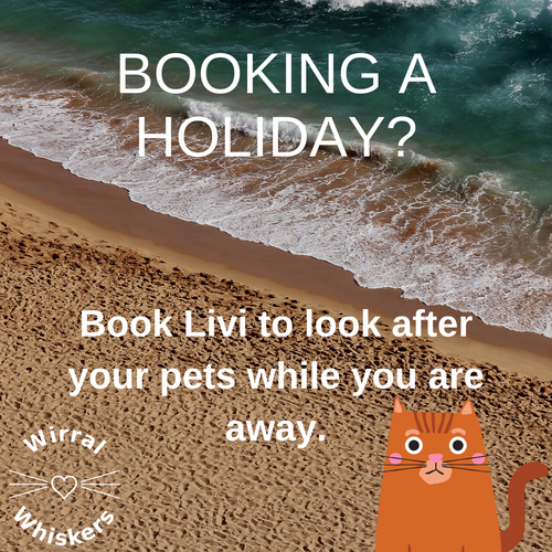 Booking a holiday