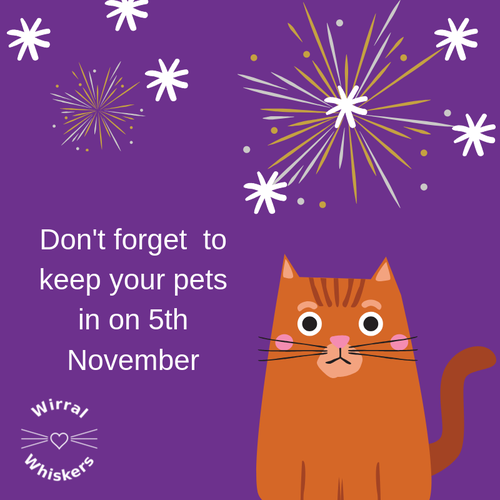 Don't forget to keep your pets in on 5th November